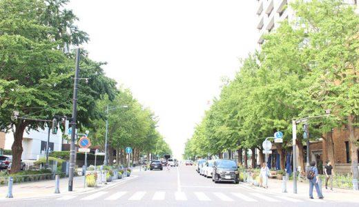 【お知らせ】パルシステム神奈川『市民活動応援プログラム』の一次選考通過しました